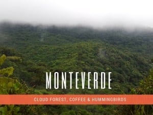 How to Travel from San Jose to Monteverde Costa Rica (The Best Way 2019)