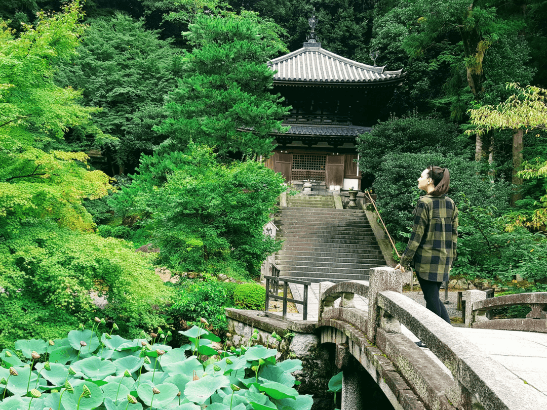 An-image-showing-things-to-do-in-Kyoto