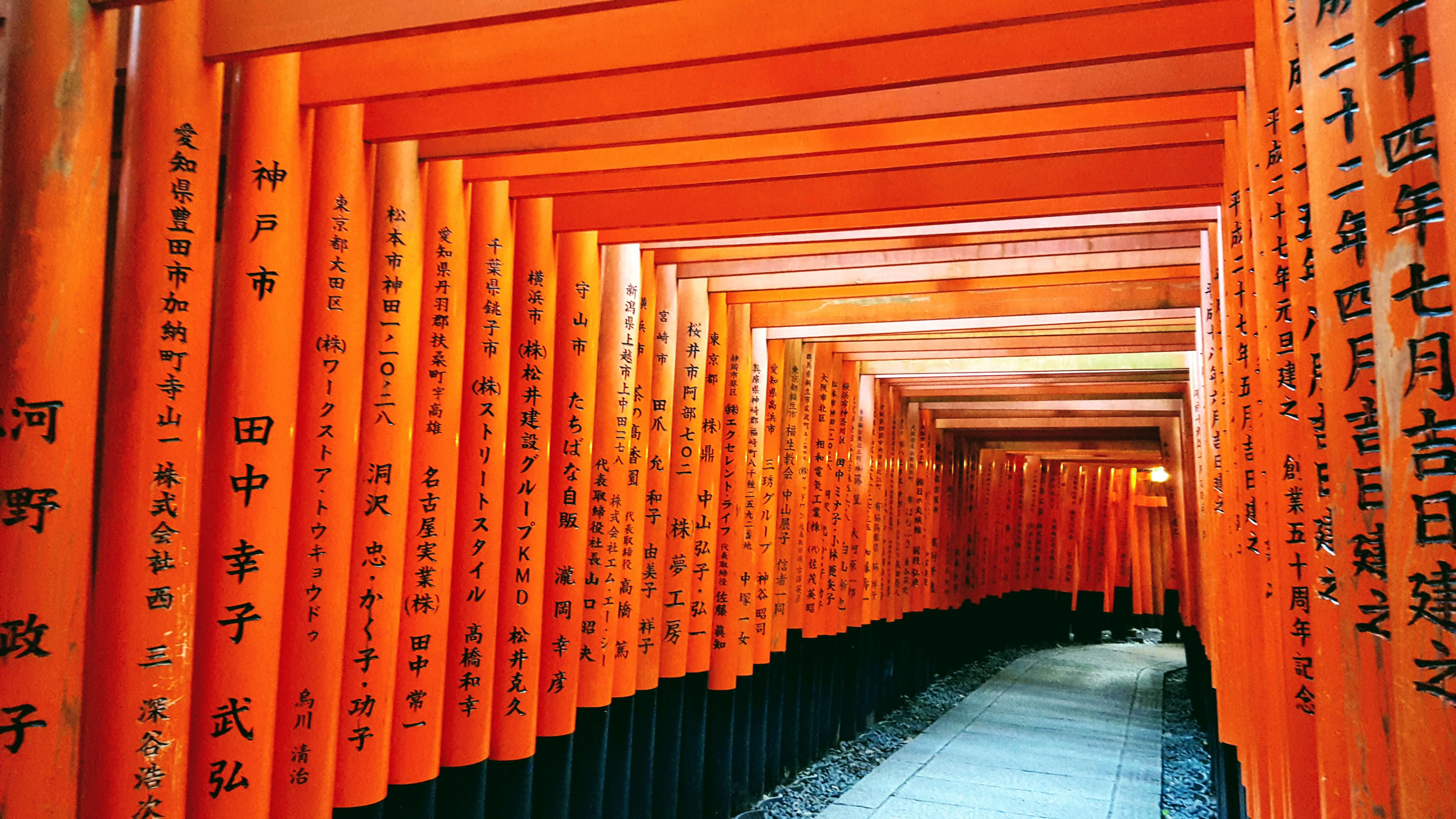 An-image-showing-top-5-things-to-do-in-kyoto-Fushi-Inari-taisha-Shrine