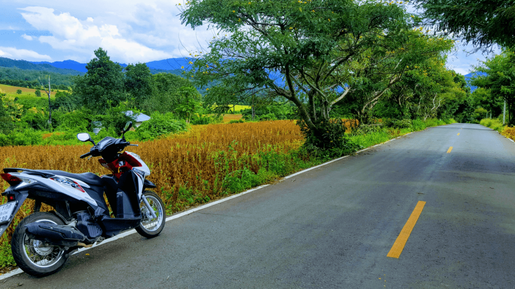 An-image-showing-where-to-rent-a-scooter-Chiang-Mai