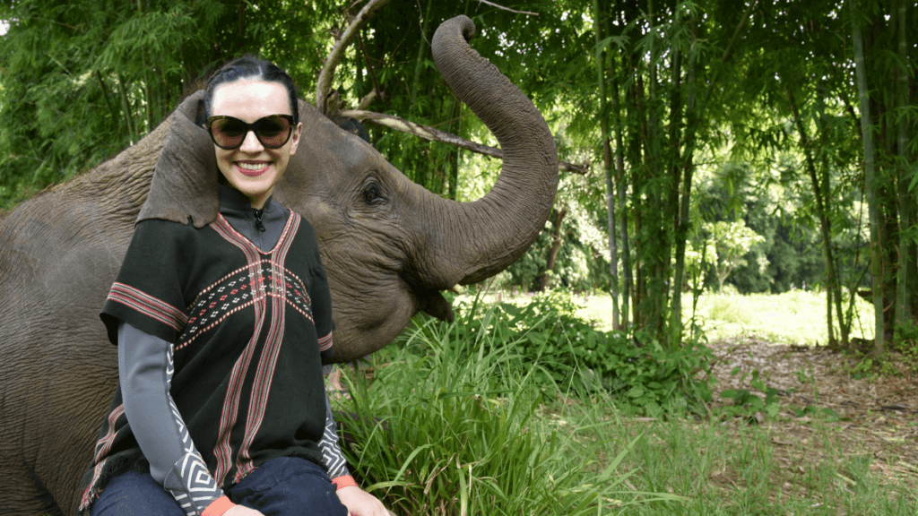 An-image-showing-the-best-place-to-see-elephants-in-Chiang-Mai