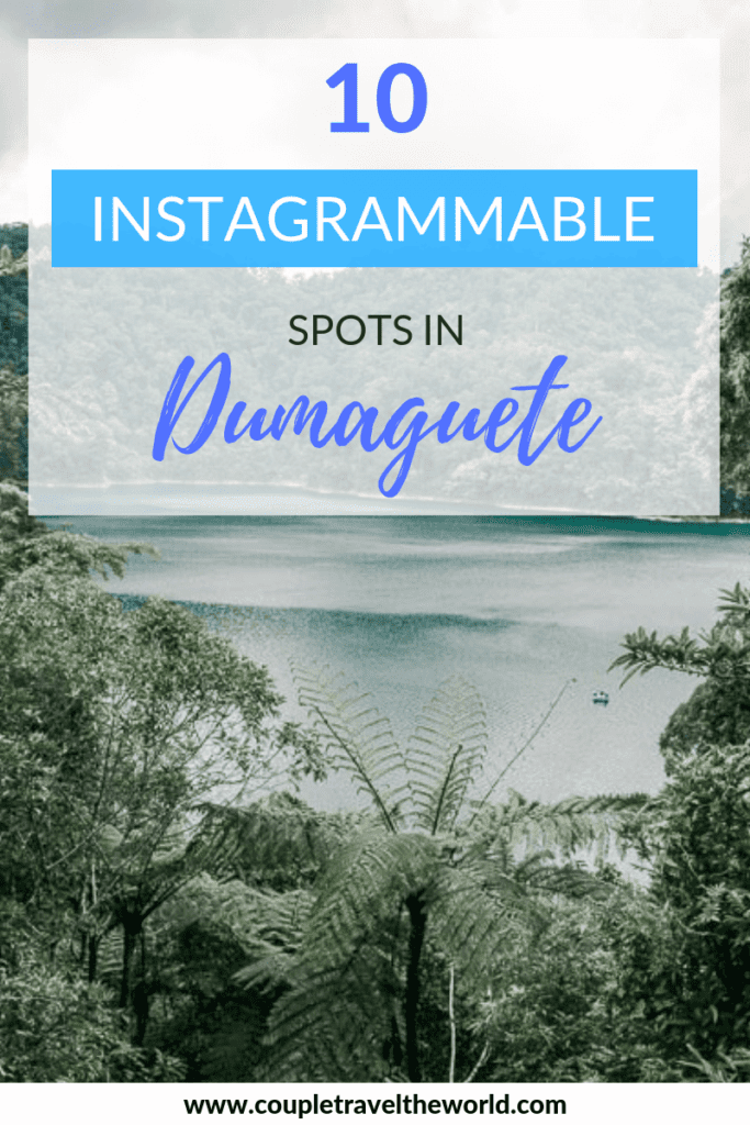 things to do in dumaguete, instagrammable places in dumaguete, apo island, twin lakes, diving, bird watching, philippines