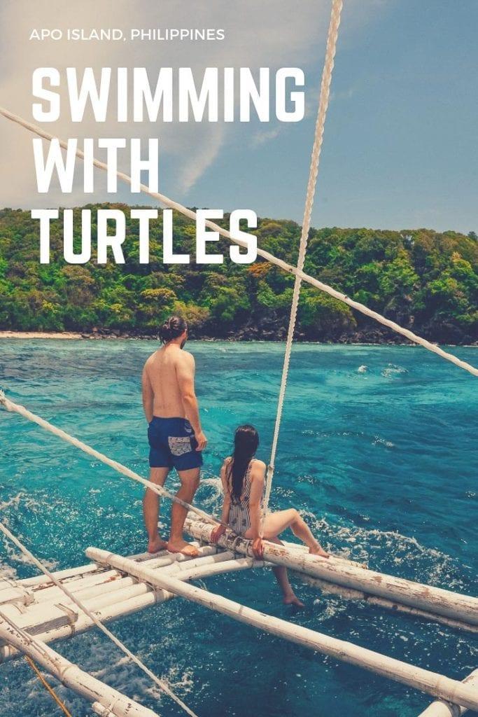 Apo Island, Apo Island Turtles, Things to do Apo Island, Things to do Dumaguete, Swim with turtles Philippines, Turtles Philippines, Swim with turtles Apo Island