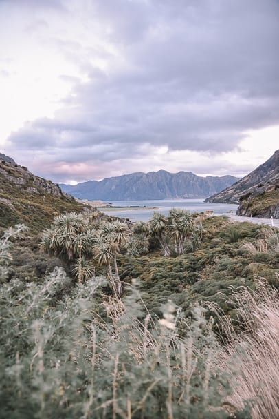 lake-wanaka, lake-wanaka-sunset, new-zealand-south-island, south-island-nz, south-island-instagram, beautiful-places-new-zealand, franz-josef-wanaka, franz-josef-to-lake-wanaka, south-island-road-trip-destinations, things-to-see-south-island-new-zealand, 14-day-nz-itinerary