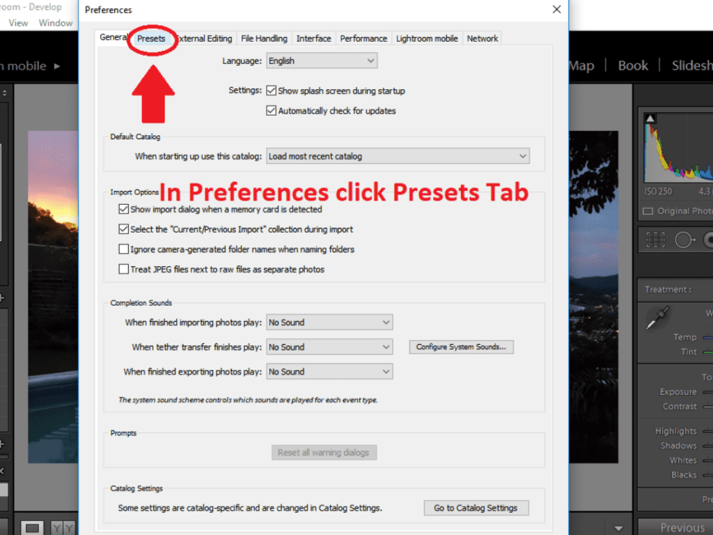 in-preferences-select-presets-tab