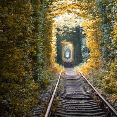 Tunnel of Love Ukraine (The Most Romantic Place on Earth)
