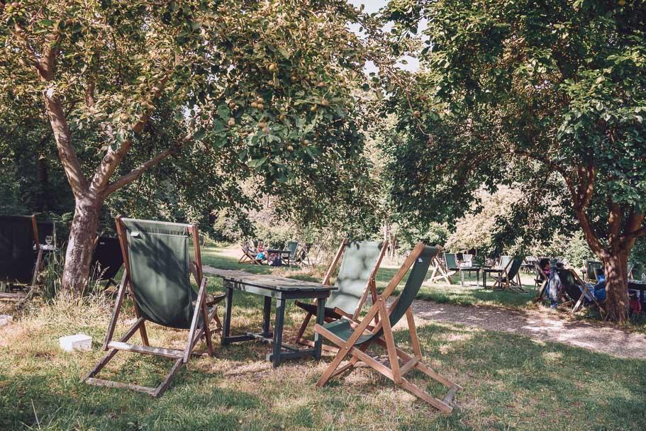 orchard-tea-room-cambridge-scones