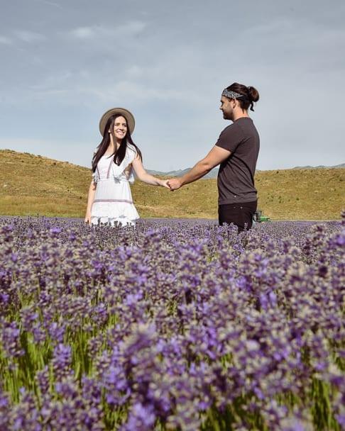 Best-Lavender-Farm-England