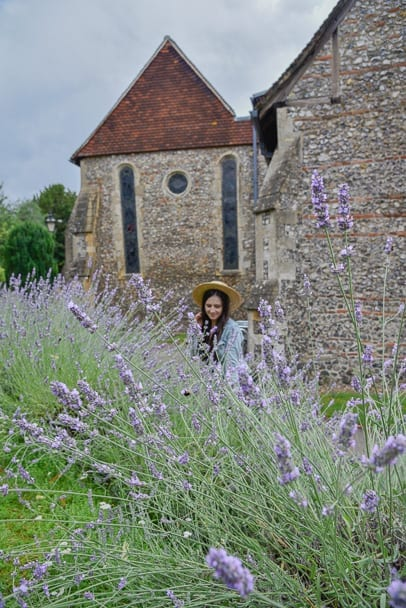 Lavender-Farm-England-UK