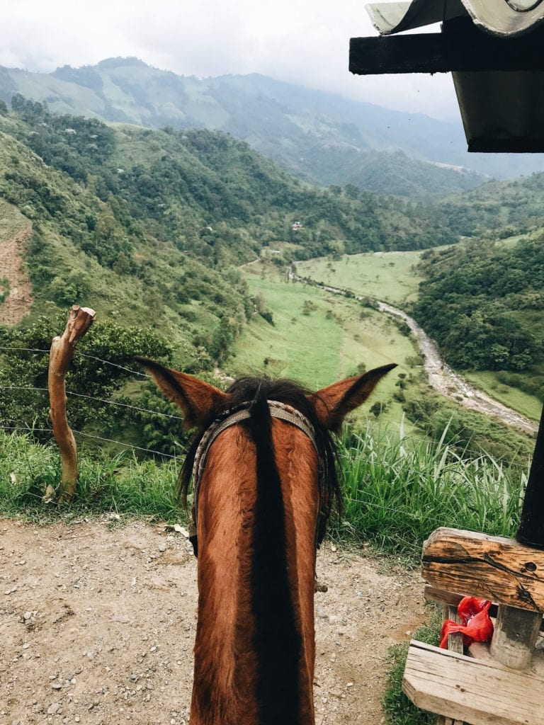 Where to Stay in Salento, Colombia