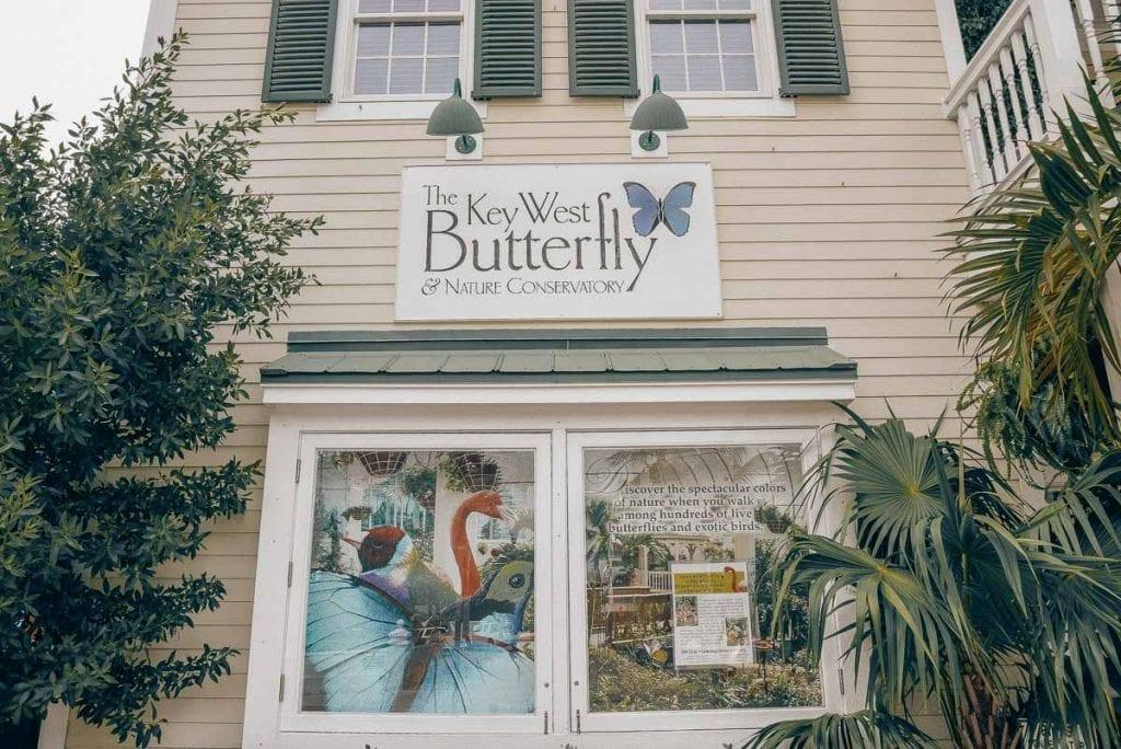 Key-West-Butterfly-Conservatory