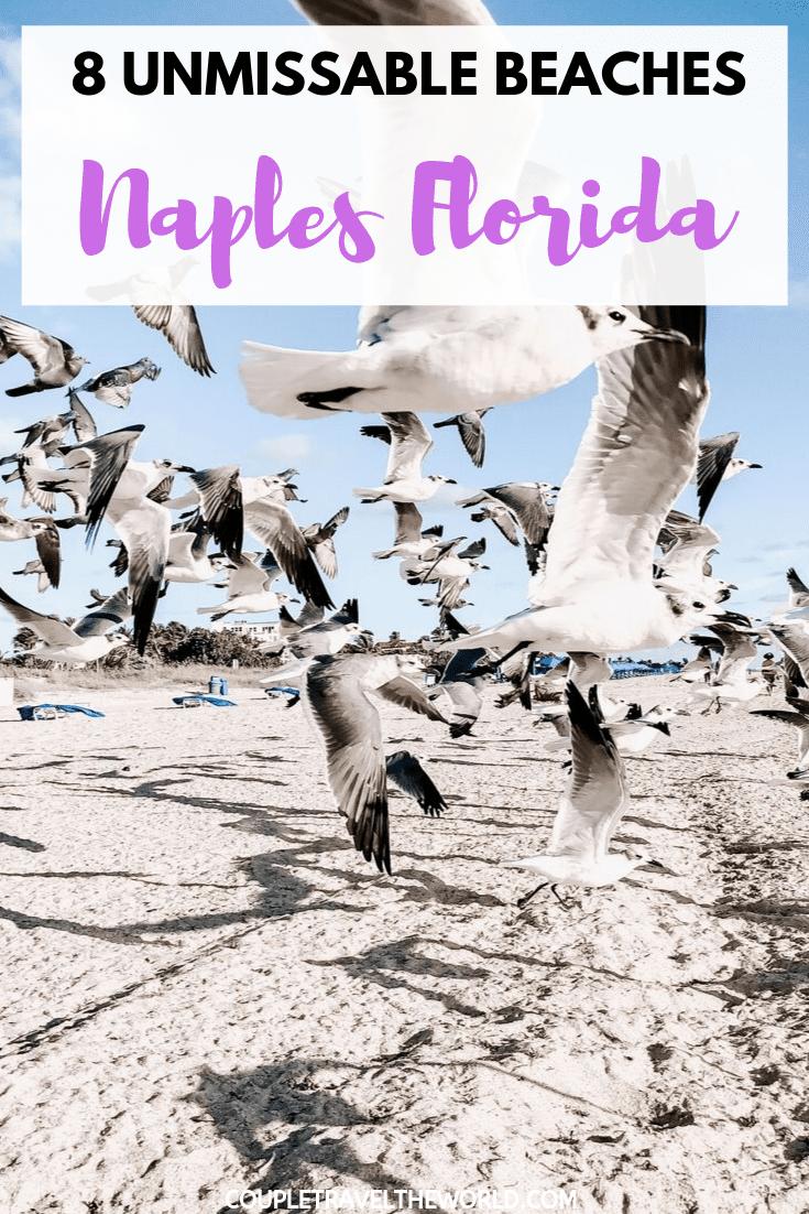 NAPLES-FLORIDA-BEACH-GUIDE