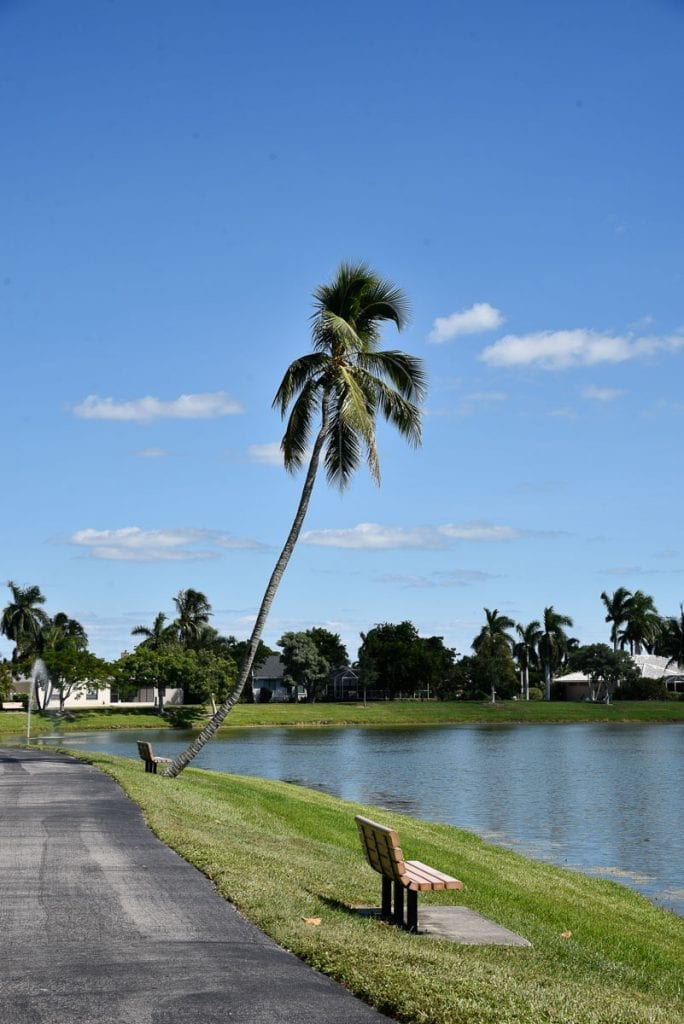 Fishing in Markle Park is one of the locals' favorite things to do in Marco Island