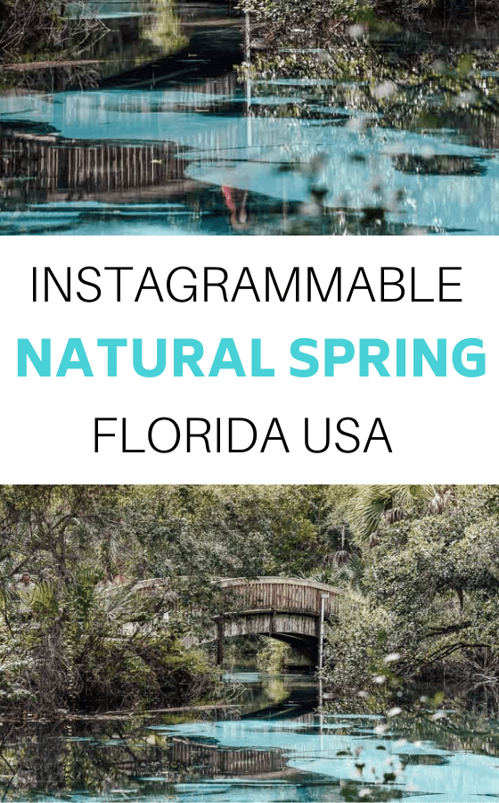 INSTAGRAMMABLE-SPRING-FLORIDA