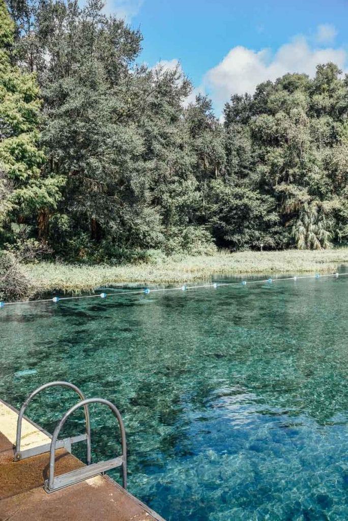 Rainbow-Springs-State-Park-swimming