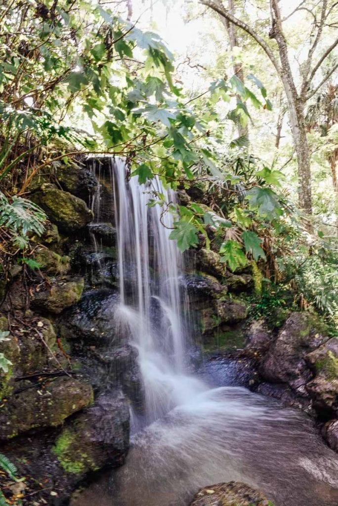 Rainbow-Springs-State-Park-waterfalls