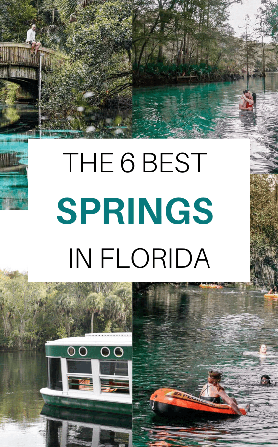 SPRINGS-IN-FLORIDA