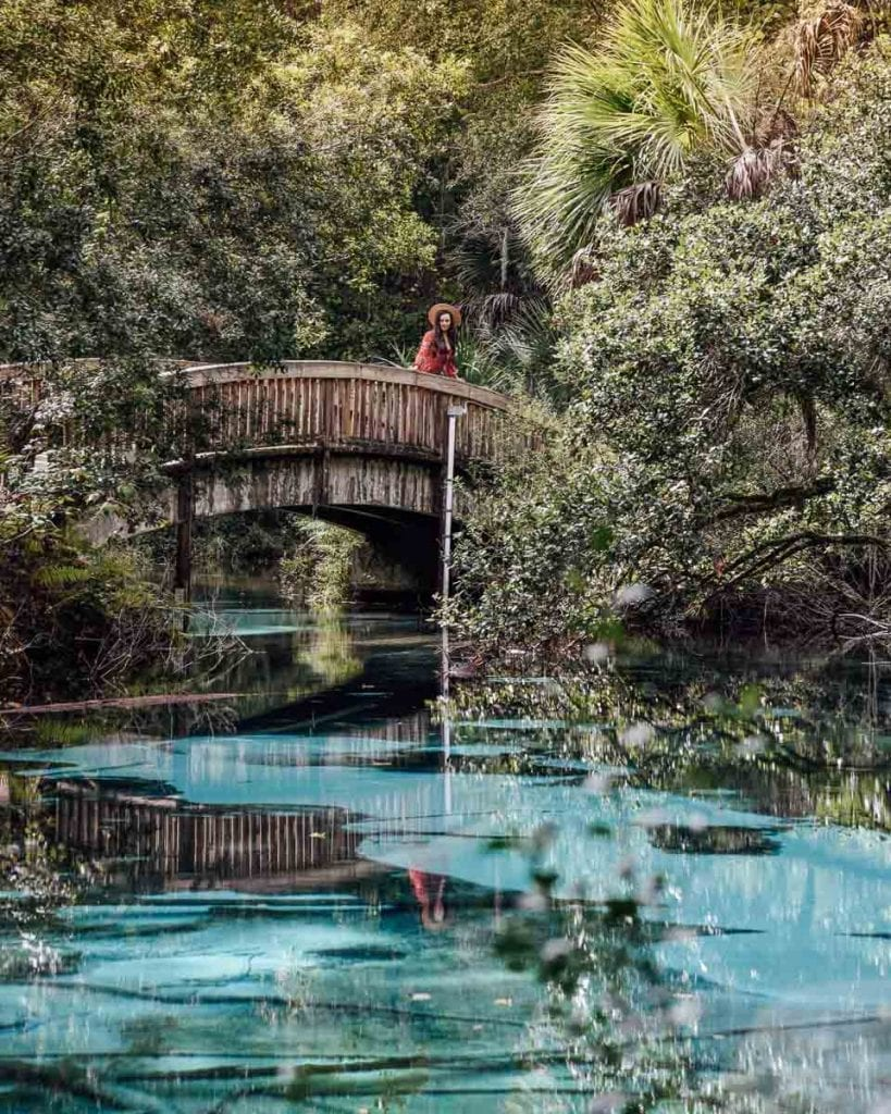 juniper-springs-florida