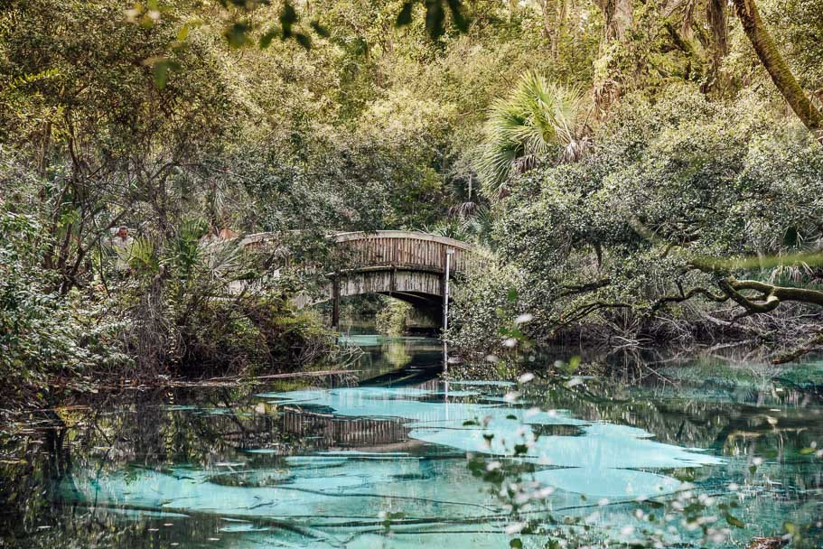 Juniper Springs | An Instagrammable Florida Spring