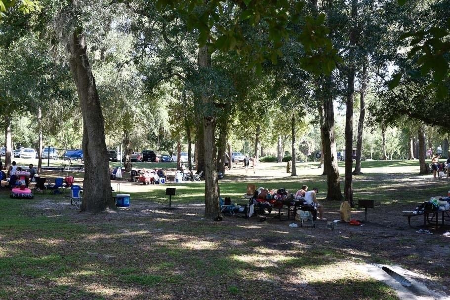 kelly-park-picnic.