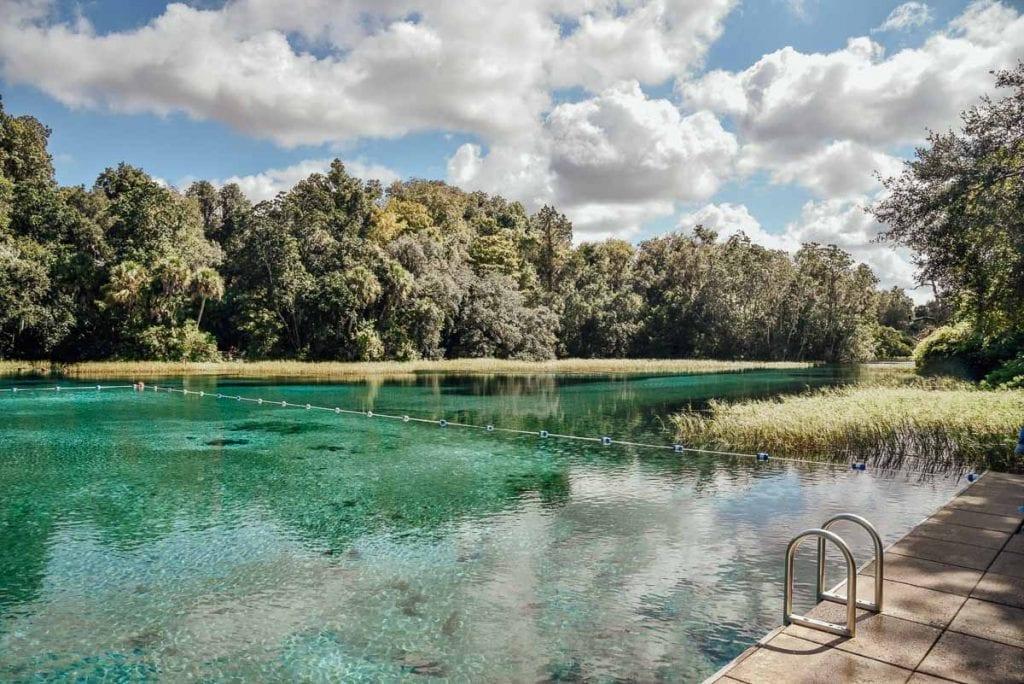 rainbow-springs-florida-nature-swimming