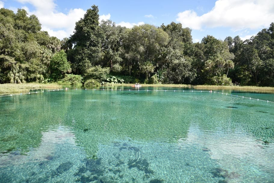 20 Photos to Inspire you to visit Rainbow Springs State Park