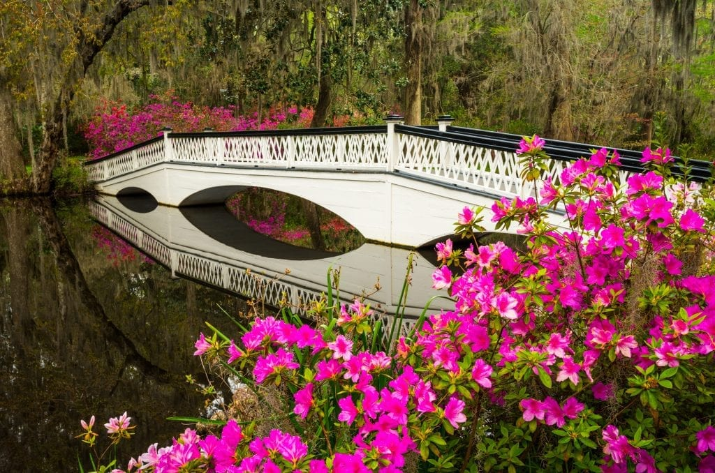 Magnolia-Plantation-Charleston