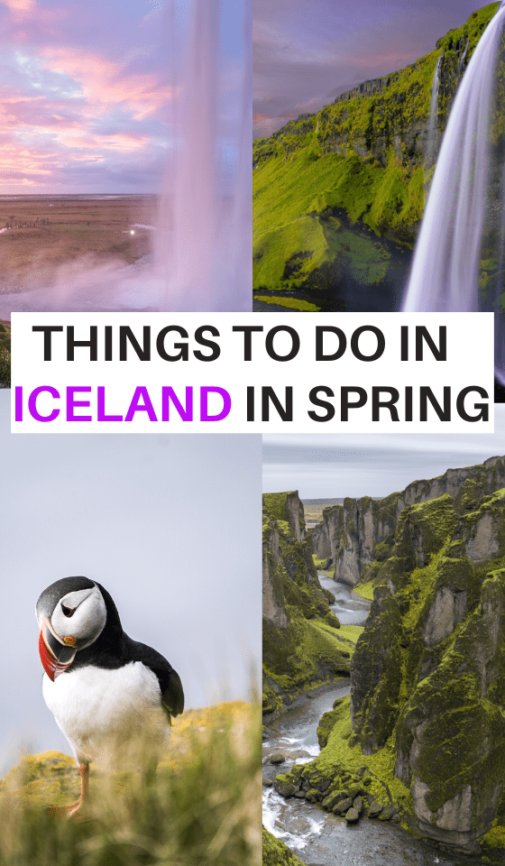 ICELAND-IN-SPRING