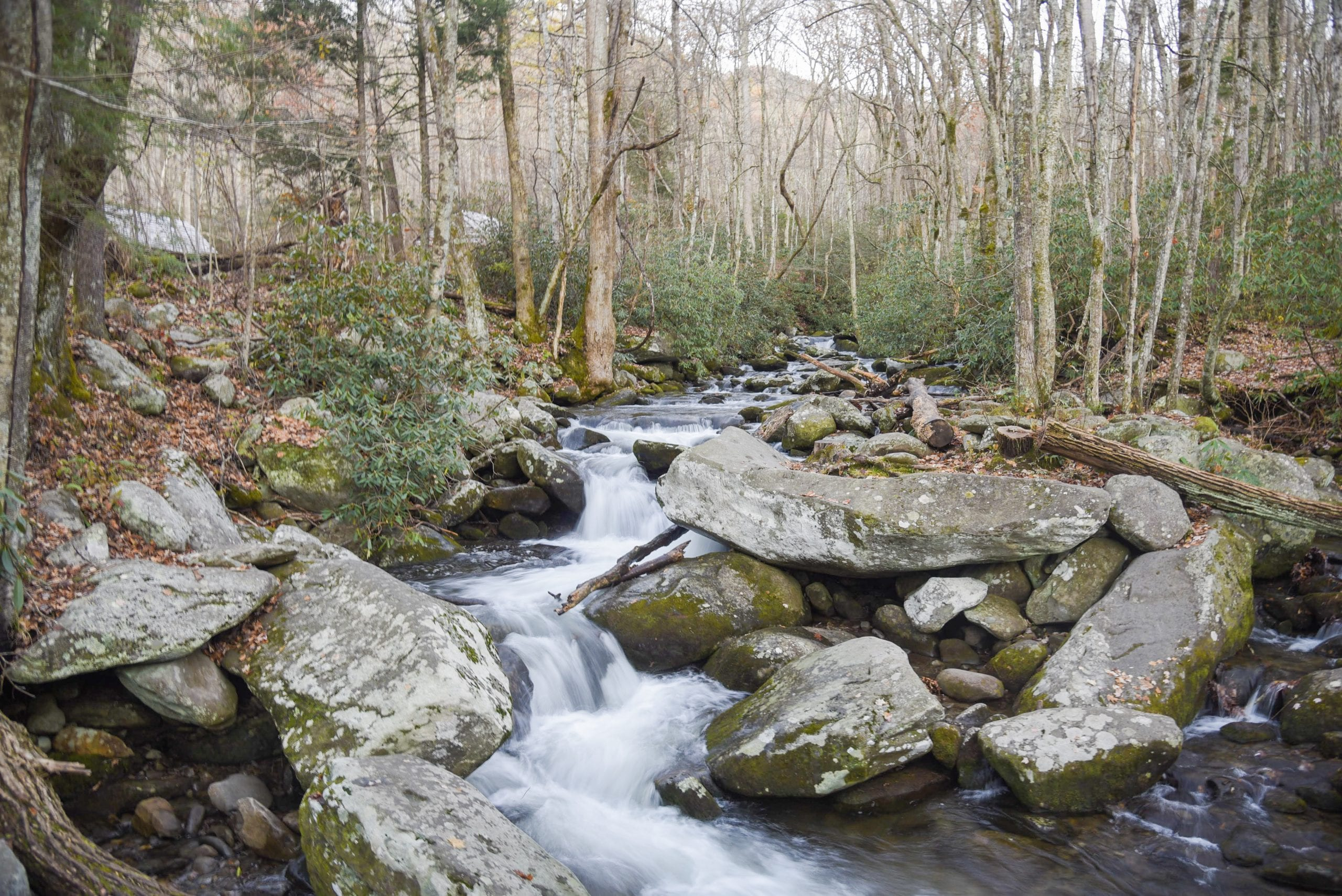 Pigeon-Forge-Smokey-mountains-national-park