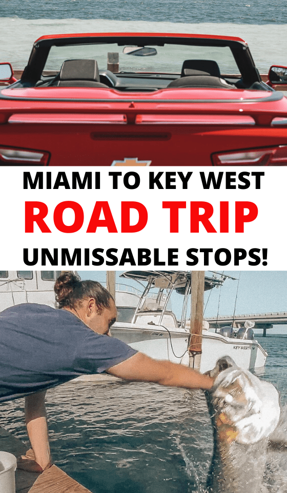 Miami to Key West Drive: The Ultimate Road Trip of the Florida Keys