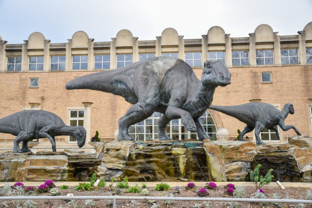 things-to-do-in-atlanta-fernbank-museum-of-natural-history