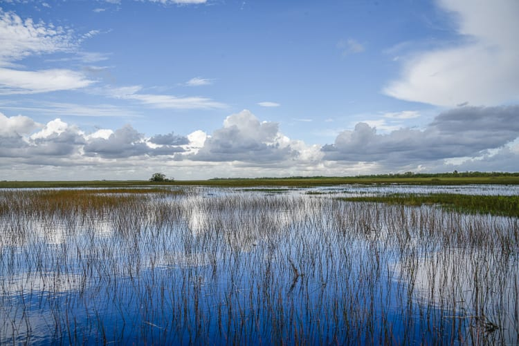 everglades-airboat-tours-best-way-to-see-everglades