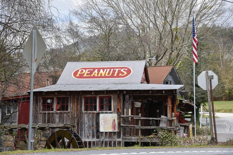 helen-ga-go-freds-peanuts