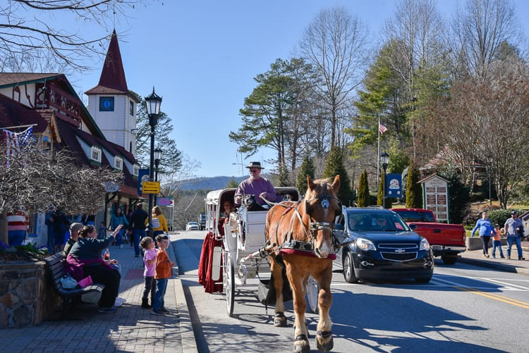 helen-ga-horse-drawn-carriage-ride